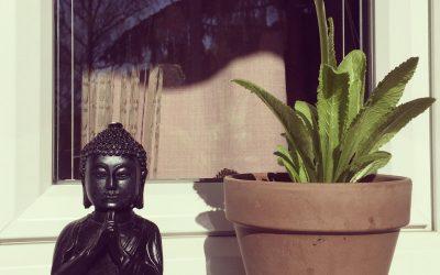 Namaste 🙏