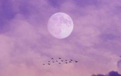 Polna luna v znamenju Tehtnice in Nakšatri Swati, 27.4. ob 05:31